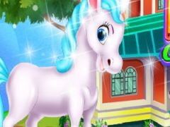 Pony House Cleaning