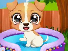 Puppy Fun Care