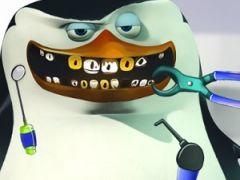Skipper at the Dentist